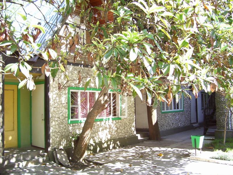 Пансионат находка расположен в небольшом поселке аше лазаревского района, в 200 метрах от береговой линии г сочи
